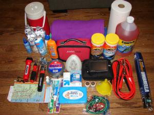Trunk organizer items